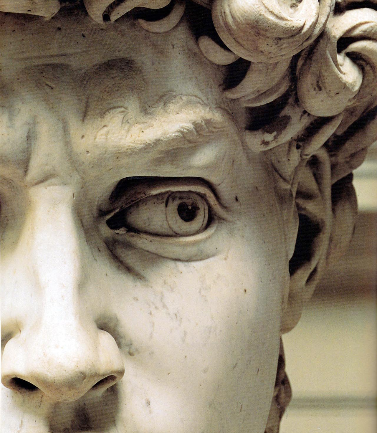 michelangelo-david-detail-face