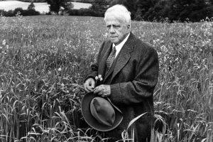 """""""La strada non presa"""": una poesia di Robert Frost"""