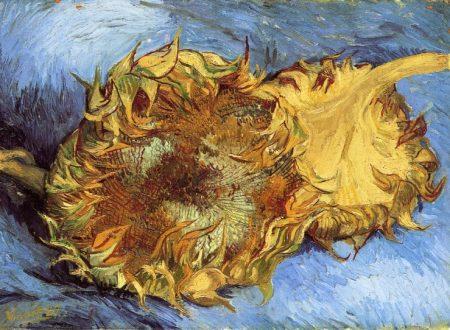 I fiori dipinti da Vincent van Gogh in un video