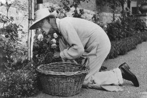 """""""Io ti chiesi"""": la splendida poesia di Hermann Hesse"""
