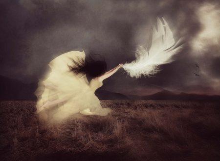 """""""La Speranza è quella cosa piumata"""": meravigliosa poesia di Emily Dickinson"""