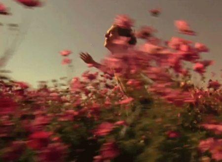 """""""Controvento"""": la meravigliosa poesia d'amore di Montserrat Abelló"""