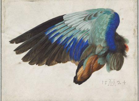 Dalla geometria all'anatomia: Albrecht Dürer e i suoi trattati sull'arte