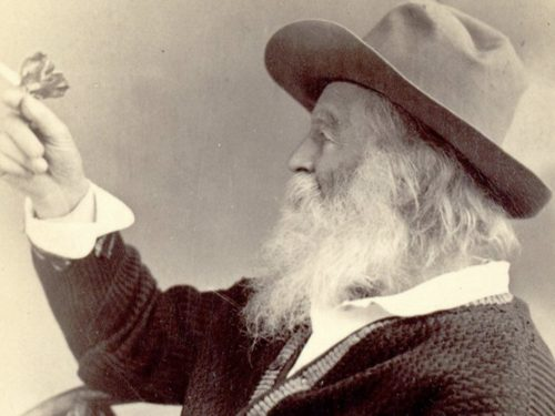 """""""Tutto vale"""": una poesia di Walt Whitman"""