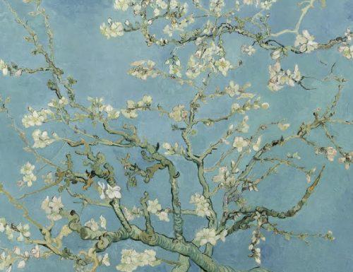 """La vita che sboccia: il """"Ramo di mandorlo fiorito"""" di Vincent van Gogh"""